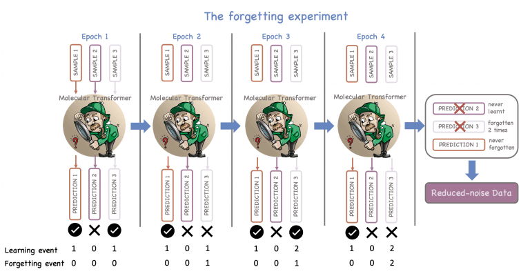 A schematic representation of the forgetting experiment, which presents how information learned and forgotten many times can potentially be noisy and should be discarded from the training set.